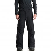 Брюки Quiksilver Estate PT M SNPT (black) S19